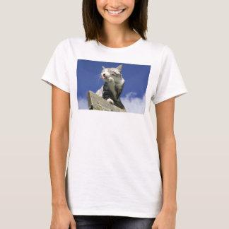 Alley cat niyan good fortune< Blue sky dazzling T-Shirt