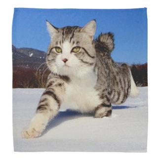 Alley cat niyan good fortune< The snowfield it Head Kerchief