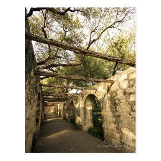 Alley in San Antonio, Texas Postcard