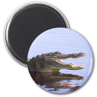 Alligator 6 Cm Round Magnet