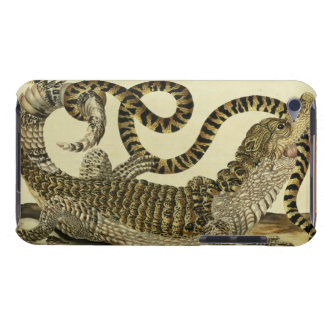 Alligator and Snake, 1730 (coloured engraving) Barely There iPod Case