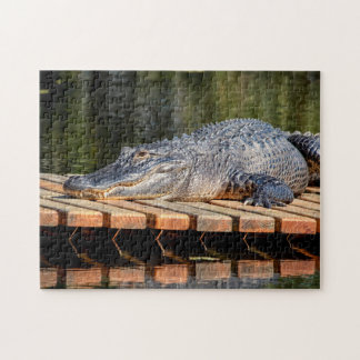 Alligator at Homosassa Springs Wildlife State Park Jigsaw Puzzle