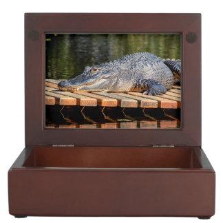 Alligator at Homosassa Springs Wildlife State Park Keepsake Box