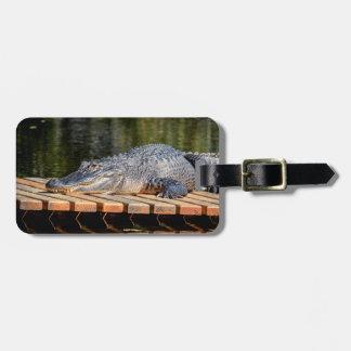 Alligator at Homosassa Springs Wildlife State Park Luggage Tag