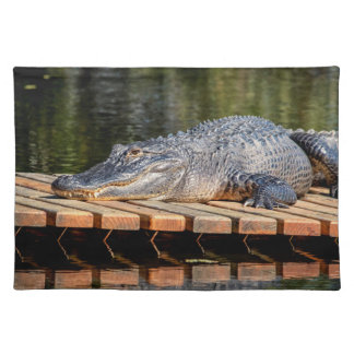 Alligator at Homosassa Springs Wildlife State Park Placemat