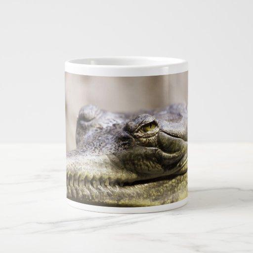 Alligator closeup photo jumbo mugs