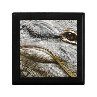 Alligator eye gift box