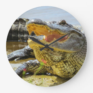 Alligator. face to face large clock