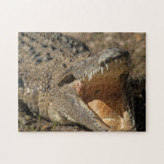 Alligator Farm Jigsaw Puzzle