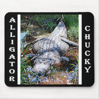 Alligator (Florida, Louisiana and Mississippi) Mouse Mat