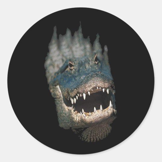 Alligator Head Shot-Huge reptiles Classic Round Sticker