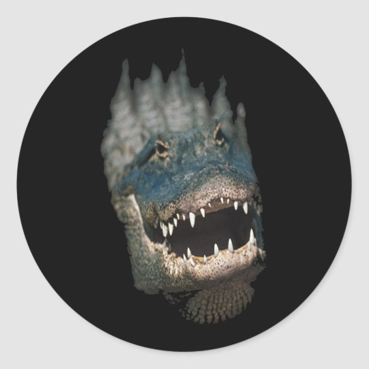 Alligator Head Shot-Huge reptiles Round Sticker