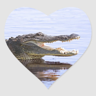 Alligator Heart Sticker