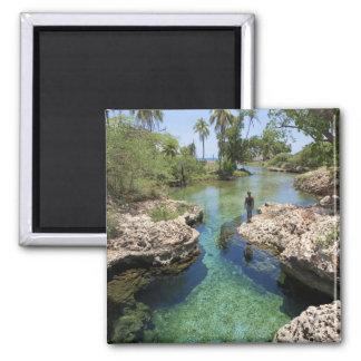 Alligator Hole, Black River Town, Jamaica Magnet