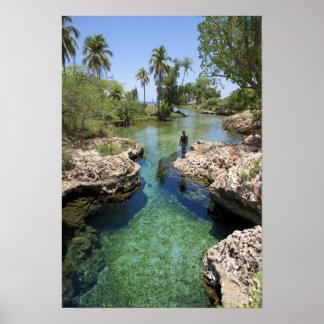 Alligator Hole, Black River Town, Jamaica Poster