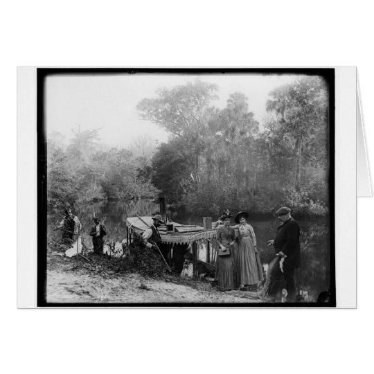 Alligator Hunting, Tomoka River, Florida 1880-1897 Card