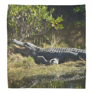 Alligator in the Sun Bandana