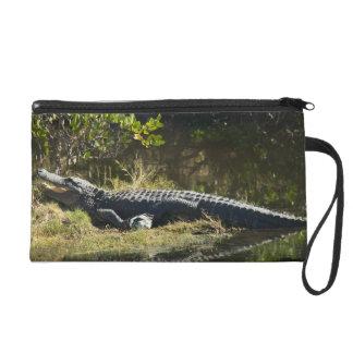 Alligator in the Sun Wristlet Clutches