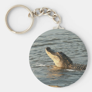 Alligator in the water. key ring