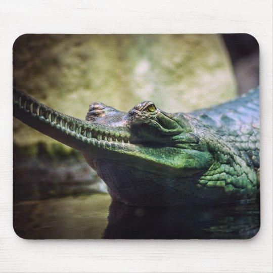 Alligator Mouse Mat