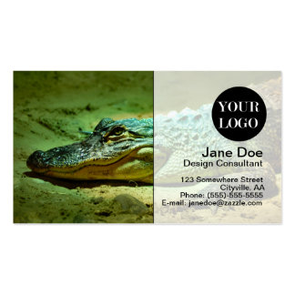 Alligator Pack Of Standard Business Cards