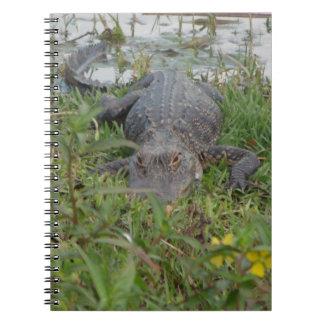 Alligator Photo Notebook
