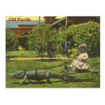 ALLIGATOR POWER, Old Florida Postcard