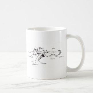 Alligator Skull Diagram Basic White Mug