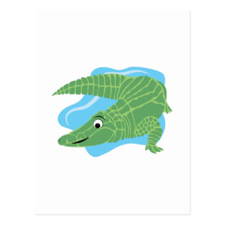 Alligator Swamp Postcard