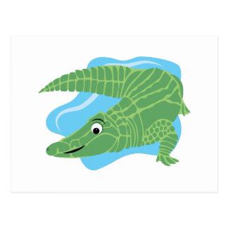 Alligator Swamp Post Card