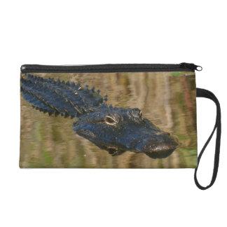 Alligator Swimming Wristlet