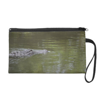 alligator swimming in water reptile animal wristlet clutch