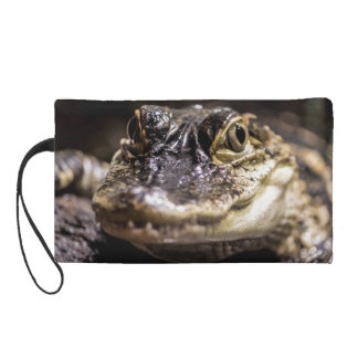 Alligator Wildlife Reptile Animal Photo Wristlets