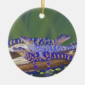 alligators christmas ornament