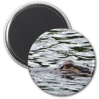 Alligators Magnet