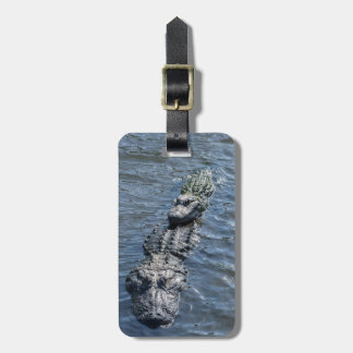Alligators Resting in Shallow Water Luggage Tag