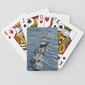Alligators Resting in Shallow Water Playing Cards