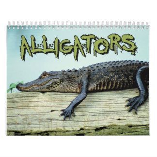 Alligators Wall Calendar