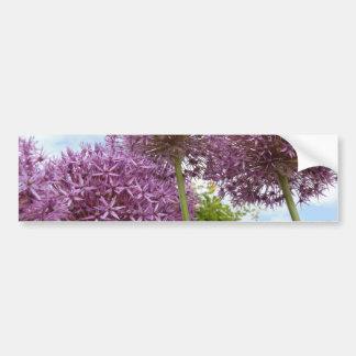 Allium Flower Bumper Sticker