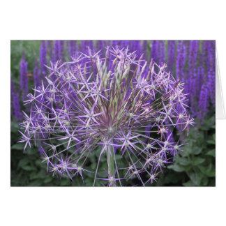 Allium/Salvia Greeting Card