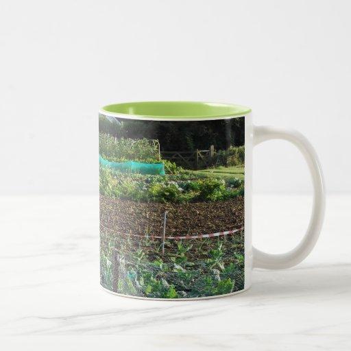 Allotment Mugs