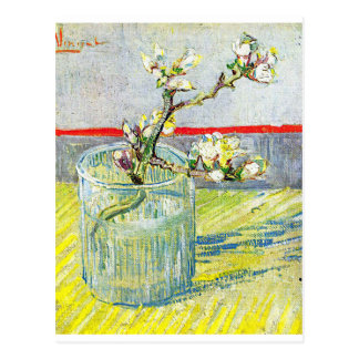Almond Blossom Branch Postcard