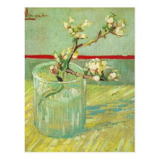 Almond Blossom Branches in Glass Van Gogh Fine Art Postcard