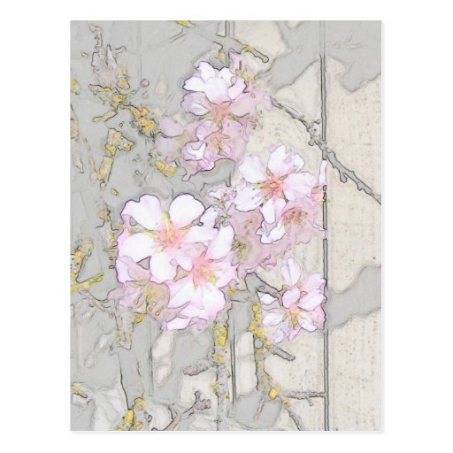 Almond Blossom Fence Post Card