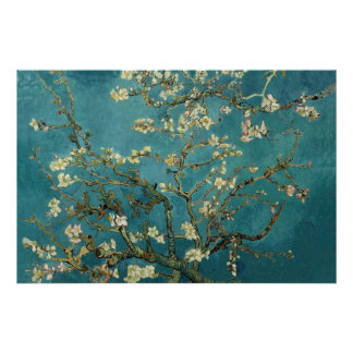 Almond Blossom Poster