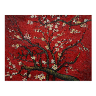 Almond Blossom Vincent Van Gogh Postcard