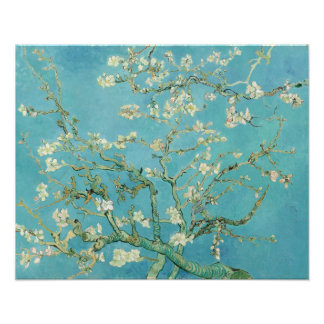 Almond Blossoms by Vincent van Gogh Photo Print