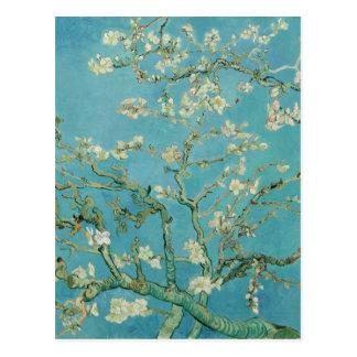 Almond Blossoms by Vincent van Gogh Postcards