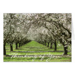 Almond Blossoms Notecard Note Card