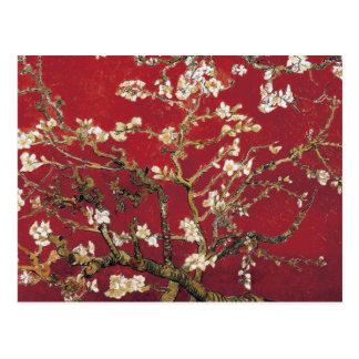 Almond Blossoms Red Vincent van Gogh Art Painting Postcard
